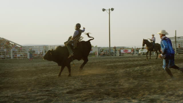 slow motion shot of a bull rider competing in a bull riding event in a stadium full of people while the rodeo clown watches at sunset - rodeo stock videos & royalty-free footage