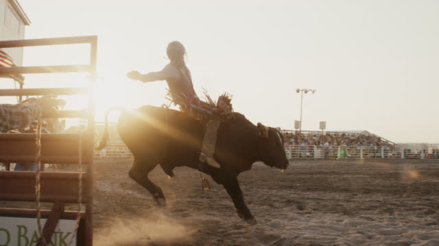 slow motion shot of a bull rider competing in a bull riding event in a stadium full of people at sunset - bucking bronco stock videos & royalty-free footage