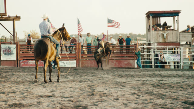 slow motion shot of a bull rider competing in a bull riding event before being thrown from the bull's back while the rodeo clown distracts the bull and horseback riders with ropes watch in a stadium full of people at sunset - small town america stock videos & royalty-free footage