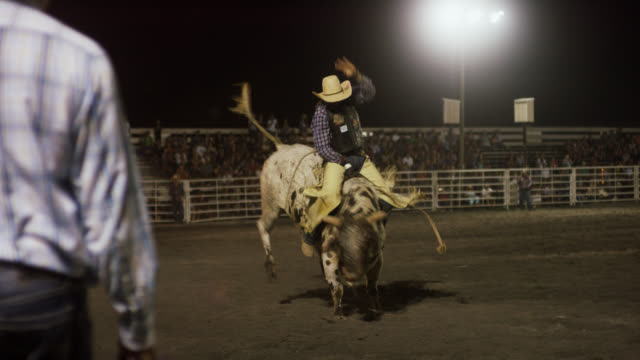 slow motion shot of a bull rider competing in a bull riding event before being thrown from the bull's back while the rodeo clown distracts the bull in a stadium full of people at night - rodeo stock videos & royalty-free footage