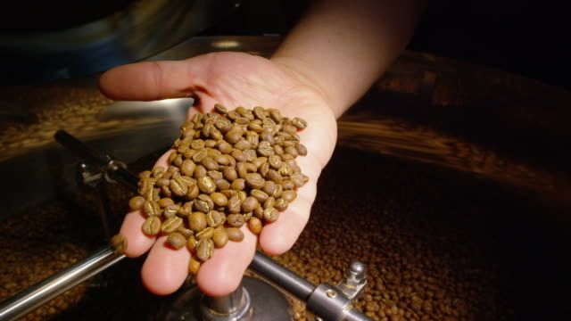 slow motion shot of a coffee roasting operator's hand picking up a handful of coffee beans from a large, coffee roaster cooling tray and showing the camera - caffeine stock videos & royalty-free footage