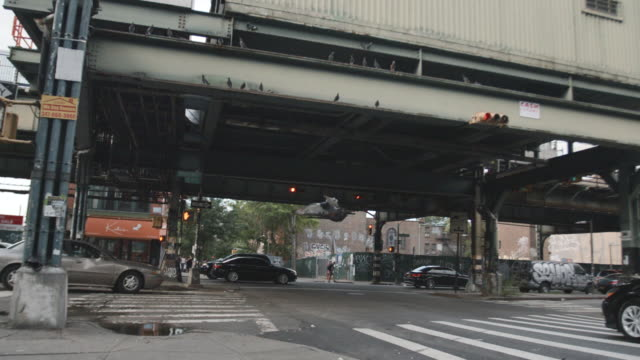 a slow motion shot of a flock of pigeons taking flight at a new york city subway station - segnale per macchine e pedoni video stock e b–roll
