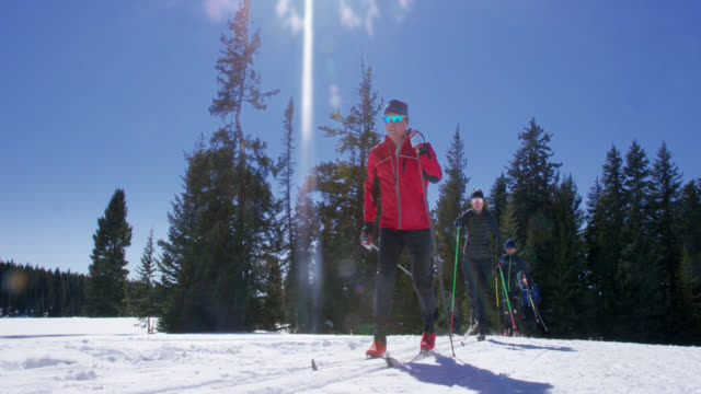 slow motion shot of a group of four adults cross-country skiing in a line in the mountains on a sunny, winter day in colorado - ski holiday stock videos & royalty-free footage