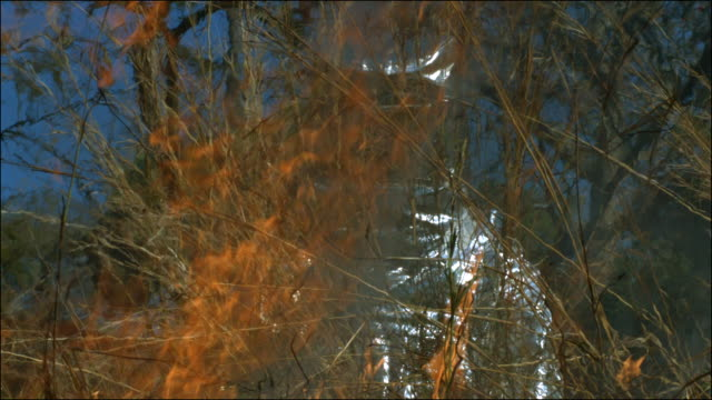 Slow motion shot of a person wearing a fire protection suit during a bush fire.