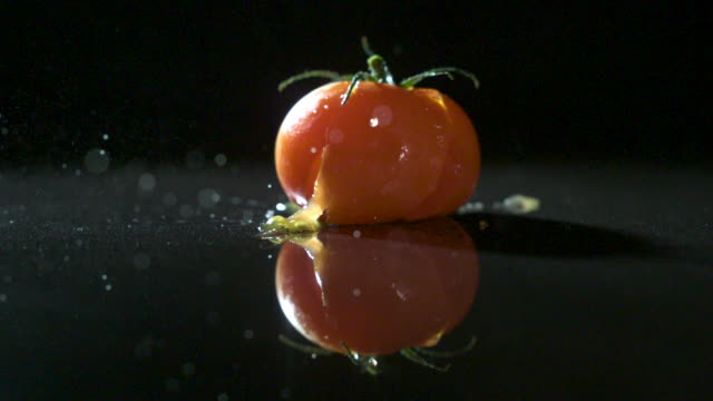 slow motion shot of a ripe tomato falling onto a hard surface. - single object stock videos & royalty-free footage