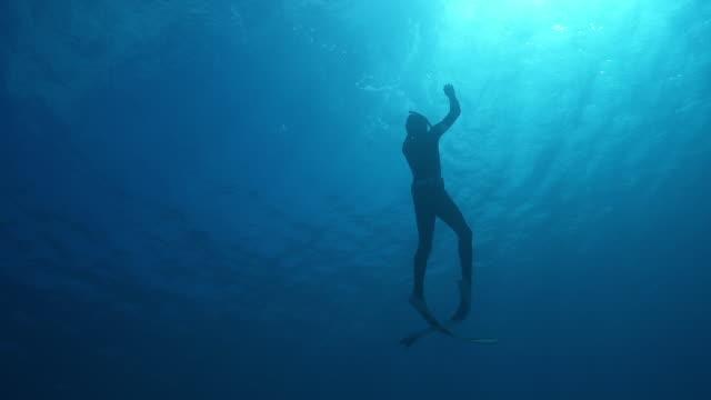 vidéos et rushes de tir au ralenti d'un plongeur sous-marin plongeant dans l'océan - plongée sous marine autonome