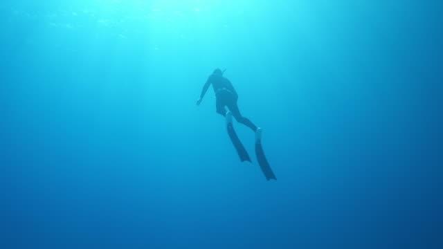 vidéos et rushes de tir de mouvement lent d'un plongeur faisant des tours de plongée sous l'eau tout en nageant - plongée sous marine autonome