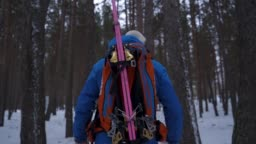 Slow motion shot of a skier hiking through the woods from behind