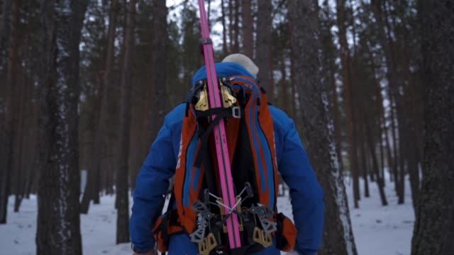 vidéos et rushes de coup de ralenti d'un skieur randonnée à travers les bois par derrière - vue de dos