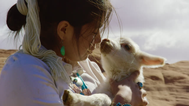 slow motion shot of a teenaged native american girl holding a lamb close to her face in monument valley, arizona/utah on a sunny day with a large rock formation in the background - arizona stock videos & royalty-free footage