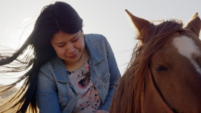 slow motion shot of a teenaged native american girl (navajo) petting her brown horse on a bright, clear day - minority groups stock videos & royalty-free footage