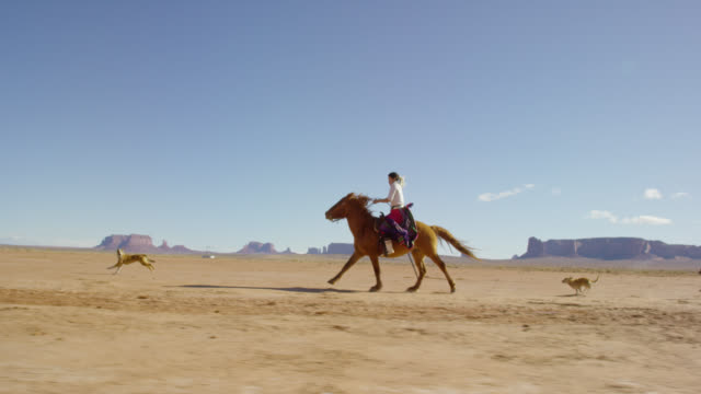 slow motion shot of a teenaged native american girl wearing traditional navajo clothing galloping on her horse across the monument valley desert with her pet dogs with large rock formations in the distance on a clear, bright day - horse family stock videos & royalty-free footage