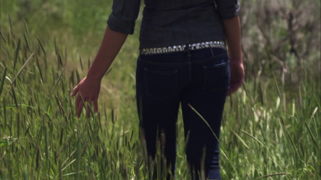 Slow motion shot of a woman walking through tall grass.