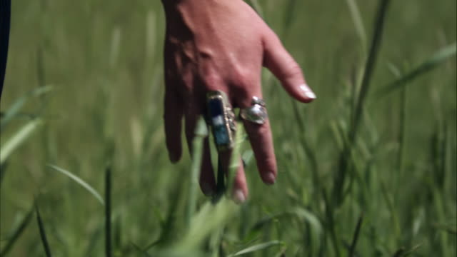 slow motion shot of a woman's hand touching tall grass. - alta utah video stock e b–roll