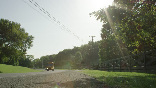 slow motion shot of a yellow school bus driving along a street in a lush, green residential neighborhood in tennessee surrounded by a fence, mailboxes, and a forest on a sunny, bright morning - tennessee stock videos & royalty-free footage
