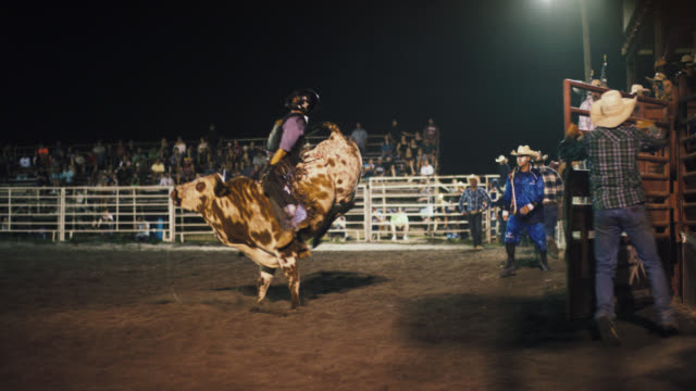 slow motion shot of a young male bull rider competing in a bull riding event before being thrown from the bull's back while the rodeo clown distracts the bull in a stadium full of people at night - bucking bronco stock videos & royalty-free footage