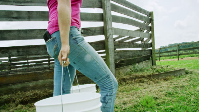 vídeos de stock e filmes b-roll de slow motion shot of a young woman carrying five gallon buckets past a horse corral on a farm on a partly cloudy day - rancho quinta
