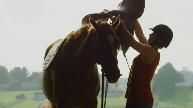 slow motion shot of a young woman in her thirties wearing a helmet putting a saddle on her brown horse's back on a sunny day on a horse farm with farmhouses and green pasture in the background - saddle stock videos & royalty-free footage