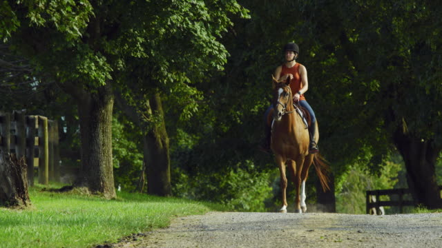 slow motion shot of a young woman in her thirties wearing a helmet riding her brown horse along a dirt road surrounded by a wooden fence and trees on a sunny day - all horse riding stock videos & royalty-free footage