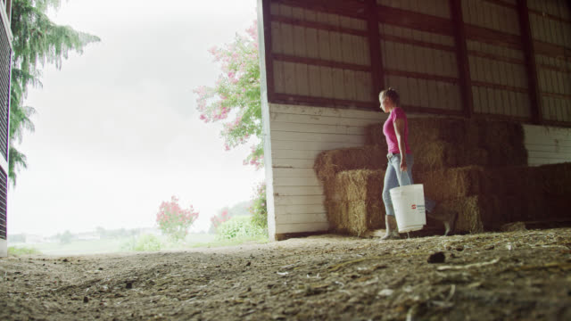 slow motion shot of a young woman wearing work boots carrying five gallon buckets out of a barn on a farm - new england usa stock videos & royalty-free footage