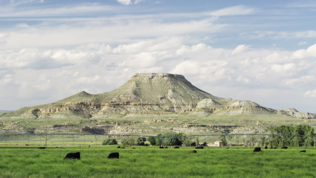 vidéos et rushes de slow motion shot of butte in wyoming with cattle - piton rocheux
