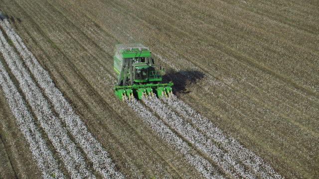 vídeos y material grabado en eventos de stock de slow motion shot of cotton pickers - cotton