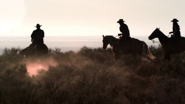 slow motion shot of cowboys galloping through desert. - all horse riding stock videos & royalty-free footage