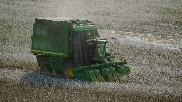 vídeos y material grabado en eventos de stock de slow motion shot of mechanical cotton picker - cotton