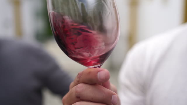 slow motion shot of red wine being swirled in a glass - portugal stock videos & royalty-free footage