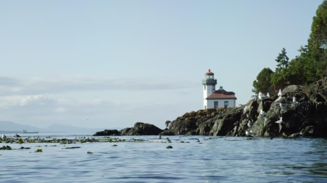 stockvideo's en b-roll-footage met slow motion shot van zeevogels vliegen en water kabbelen in vrijdag harbor met lime kiln vuurtoren op de achtergrond in de buurt van san juan island op een zonnige dag - washington state