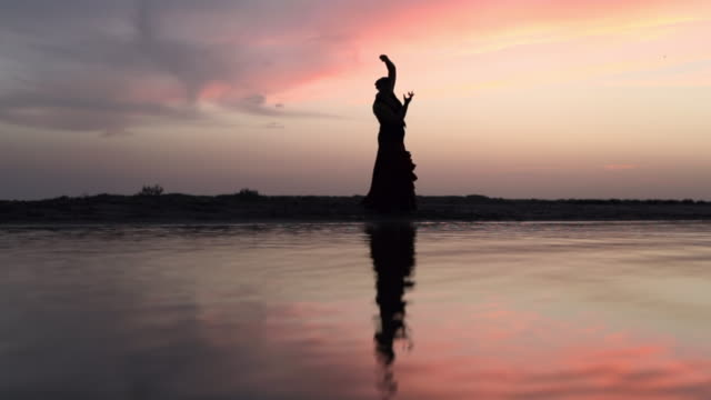 slow motion shot of silhouette woman dancing on shore with reflection in water during sunset - camargue, france - wide angle stock videos & royalty-free footage