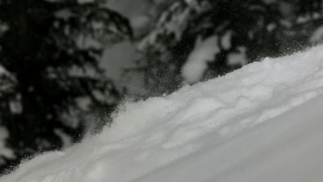 Slow motion shot of snow flowing down a mountainside.