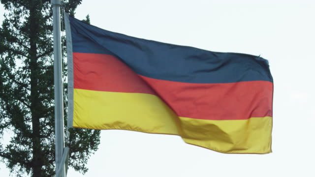 slow motion shot of the flag of germany blowing in the wind by pine trees on a sunny day - identity politics stock videos & royalty-free footage