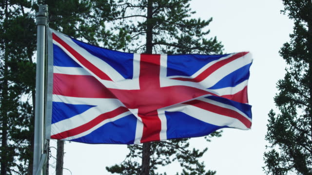 slow motion shot of the flag of the united kingdom blowing in the wind by pine trees on a sunny day - identity politics stock videos & royalty-free footage