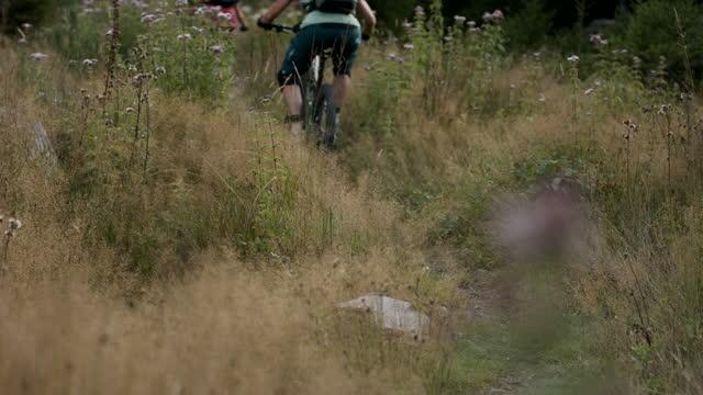 カメラを通して密なブラシを通って乗っている3人のマウンテンバイカーのスローモーションショット - サイクリングロード点の映像素材/bロール