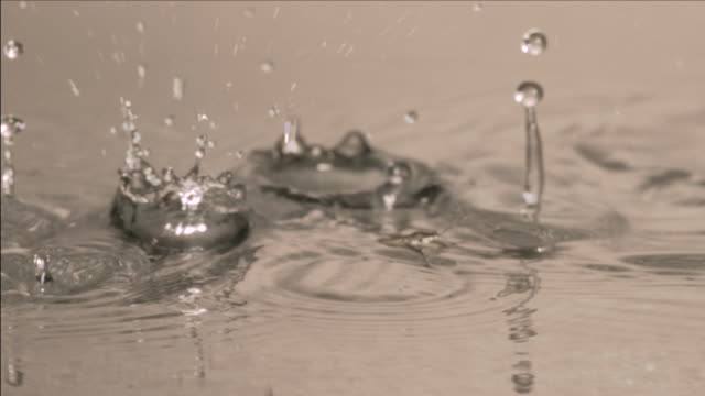 slow motion shot of water droplets falling near a pond skater. - splashing droplet stock videos and b-roll footage