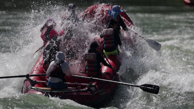 ms 4k slow motion shot of white water rafters on the snake river, wyoming - rafting stock videos and b-roll footage