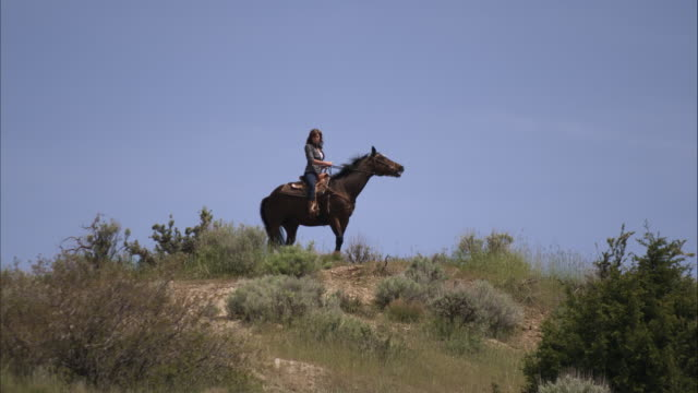 slow motion shot of woman on a horse in a high pasture. - オレム点の映像素材/bロール