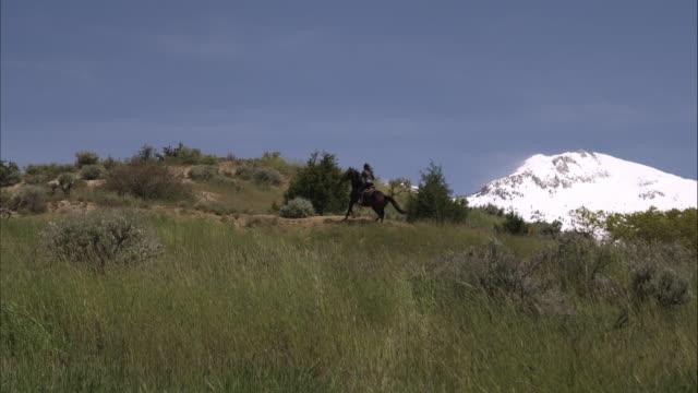 slow motion shot of woman on horseback riding in the country. - オレム点の映像素材/bロール