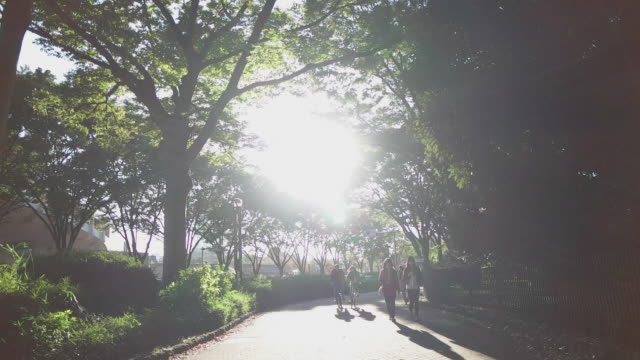 slow motion shot. silhouette of eople enjoy in the park. tokyo, japan - summer heat stock videos & royalty-free footage