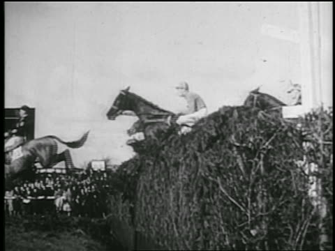 b/w 1935 slow motion side view jockeys on horses jumping over hedge in race / one horse riderless - 1935 stock videos & royalty-free footage