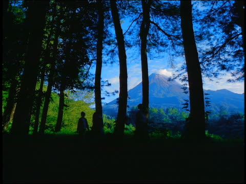 slow motion silhouette 3 people walking through forest / mt. merapi volcano in background / java, indonesia - anno 1999 video stock e b–roll