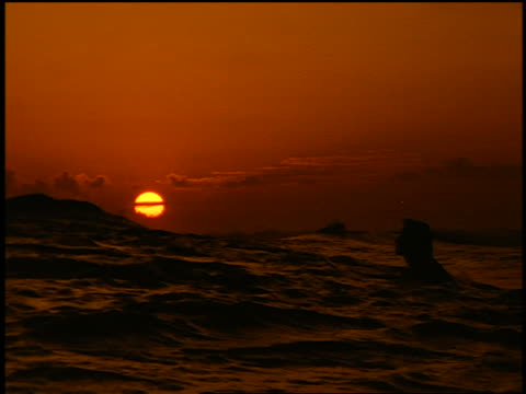 slow motion silhouette male surfer lying on surfboard waiting for wave at sunset - 若い男性だけ点の映像素材/bロール
