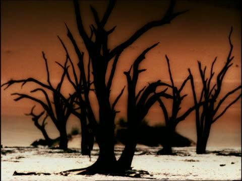 vídeos de stock e filmes b-roll de overexposed slow motion silhouette of black male athlete running past bare trees toward camera in desert - super exposto