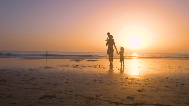 stockvideo's en b-roll-footage met slow motion - silhouette of father and son playing together in the beach at sunset - silvestre