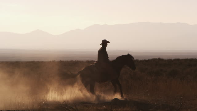 slow motion silhouette shot of a cowboy riding a hourse in a circle - all horse riding stock videos & royalty-free footage