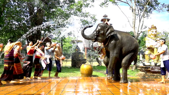 slow motion: songkran festival - beautiful women and men wear traditionnel thai costume splashing water with elephant on temple background - arts culture and entertainment stock videos & royalty-free footage