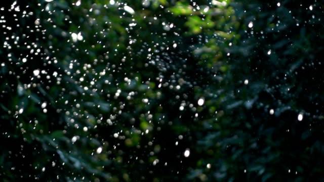 Slow motion, Sprinkler water in garden