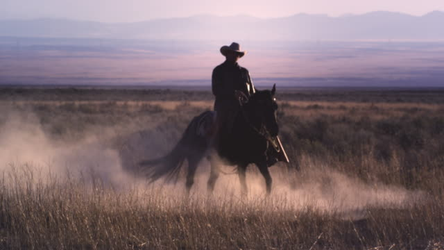 slow motion static shot of a cowboy riding a horse in a swirl of dust. - カウボーイ点の映像素材/bロール