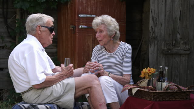 Slow motion static shot of an elderly couple having a picnic at a farm